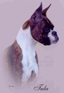 Tula portrait-0512